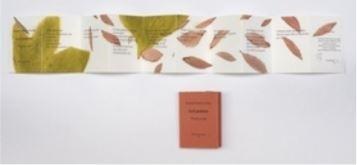 Le Livre d'artiste - Thierry Le Saëc
