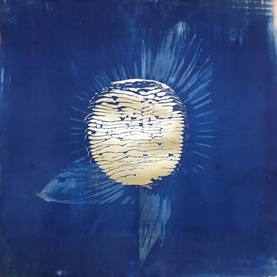 Initiation au cyanotype - Brigit Ber