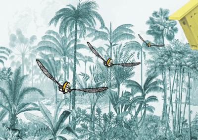 Parcours ornithologique